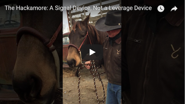 The Hackamore: A Signal Device