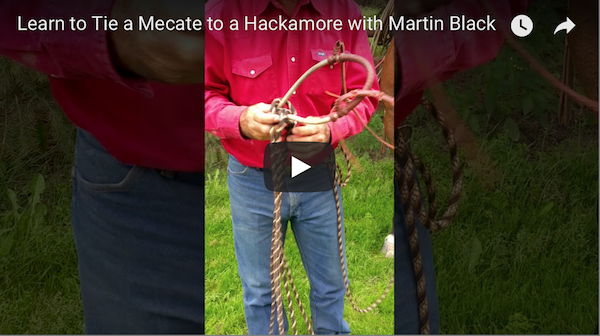 Learn to Tie a Mecate to a Hackamore