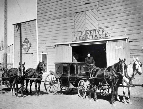 History of Equine Dentistry